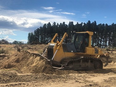 Ryan-Earthmoving-Ltd-forestry-clearing-at-the-beach.jpg